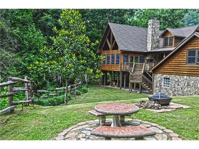 Hot Springs NC Single Family Home For Sale: $975,000