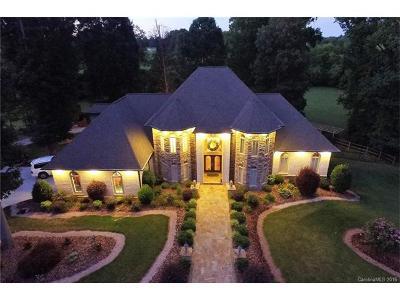 Statesville Single Family Home For Sale: 229 Cedar Lake Drive