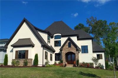 Antiquity, River Run Single Family Home For Sale: 17120 Arkansas Lane #104
