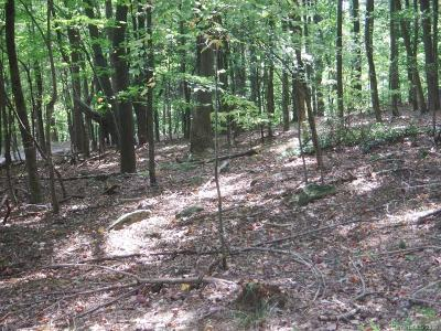 Bat Cave, Black Mountain, Chimney Rock, Columbus, Gerton, Lake Lure, Mill Spring, Rutherfordton, Saluda, Tryon, Union Mills Residential Lots & Land For Sale: LOT 324 Big Rock Road