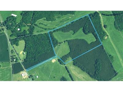 Anson County Residential Lots & Land For Sale: Randall Road