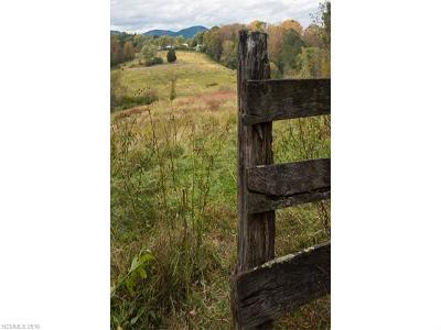 Asheville Residential Lots & Land For Sale: 142 W Oakview Road