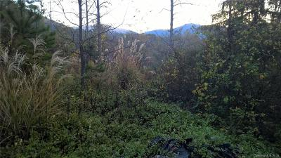 Buncombe County Residential Lots & Land For Sale: 8 Orly Lane #37 - Est