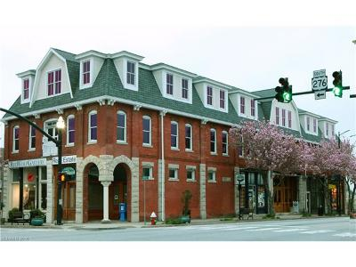 Brevard Condo/Townhouse For Sale: 23 S Broad Street #300