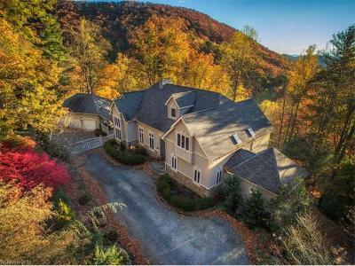 Asheville Single Family Home For Sale: 462 Lynn Cove Road