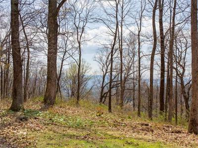 Asheville Residential Lots & Land For Sale: 99999 Old Forest Drive #Lot 2