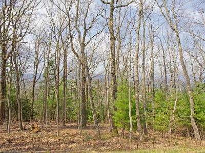 Asheville Residential Lots & Land For Sale: 18 Giffords Lane #14