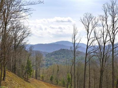 Asheville Residential Lots & Land For Sale: 75 Old Forest Drive #Lot 1