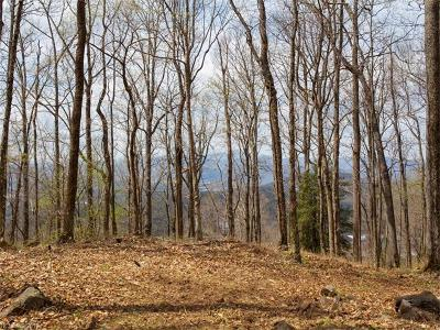 Asheville Residential Lots & Land For Sale: 99999 Old Forest Drive #Lot 2C