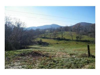 Asheville Residential Lots & Land For Sale: 95 W Oakview Road