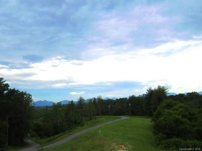 Weaverville Residential Lots & Land For Sale: Multiple Lots Monticello Road