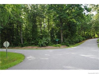 Catawba County Residential Lots & Land For Sale: 3871 Mill Run Road #43