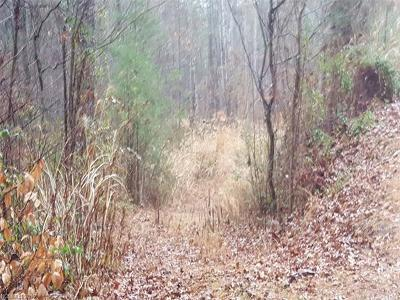 Weaverville Residential Lots & Land For Sale: 21 Deep Woods Road