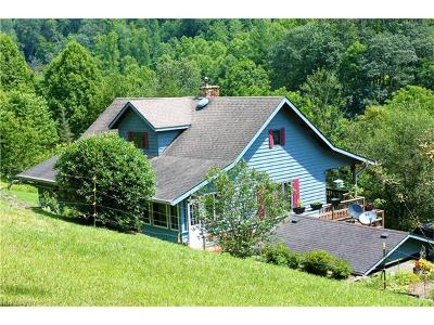 Hot Springs Single Family Home For Sale: 378 Howard Moore Road