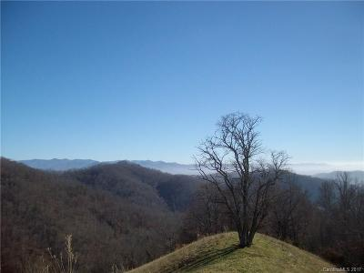 Buncombe County, Haywood County, Henderson County, Madison County Residential Lots & Land For Sale: Flynn Branch Road