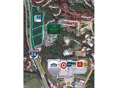 Arden NC Residential Lots & Land For Sale: $3,696,000