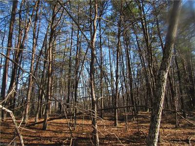 Residential Lots & Land For Sale: Buffalo Shoals Road #177