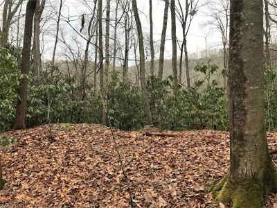 Pisgah Forest Residential Lots & Land For Sale: Skye Drive #854
