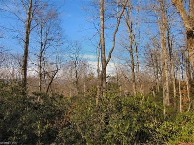 Pisgah Forest Residential Lots & Land For Sale: lot 29 Skye Drive #29