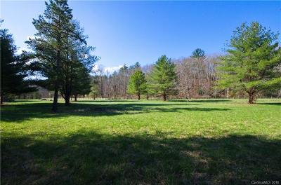 Fletcher Residential Lots & Land For Sale: 81 & 105 Gap Creek Road
