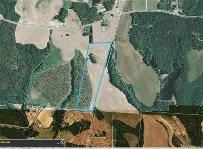 Anson County Residential Lots & Land For Sale: 38.584 Peru Road