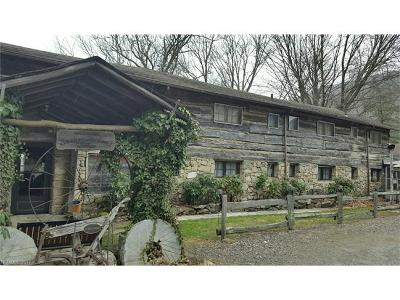 Maggie Valley Multi Family Home For Sale: 323 Smokey Shadows Lane