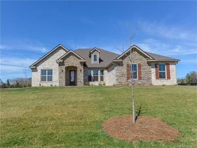 Matthews Single Family Home For Sale: 414 Alucio Court #19