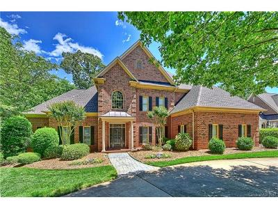 Ballantyne, Ballantyne Country Club, Ballantyne Meadows Single Family Home For Sale: 11604 James Jack Lane
