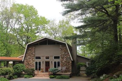 Hendersonville Single Family Home For Sale: 9 Cooper Cove S
