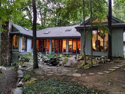 Asheville Single Family Home For Sale: 425 Bull Creek Road