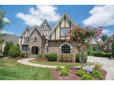 Skyecroft, Skyecroft Single Family Home For Sale: 8104 Skye Knoll Drive