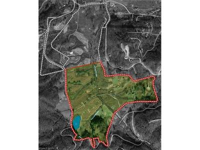 Hendersonville Residential Lots & Land For Sale: Pleasant Grove Church Road