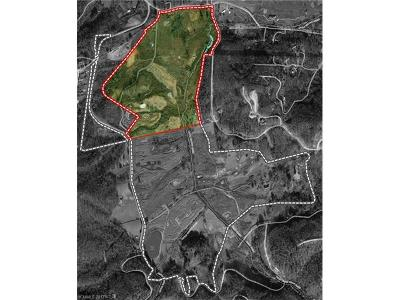 Hendersonville Residential Lots & Land For Sale: Pleasant Grove Road