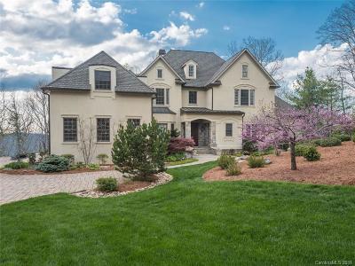 Asheville Single Family Home For Sale: 319 S Braeside Court