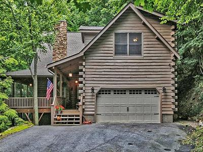 Maggie Valley Single Family Home For Sale: 21 Kanusati Trail