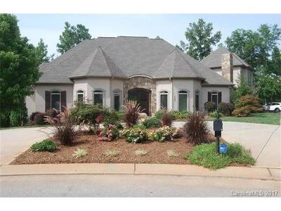 Rock Hill Single Family Home For Sale: 793 Spyglass Way