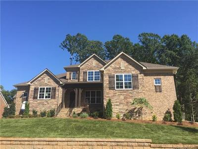 Charlotte Single Family Home For Sale: 7710 Deerfield Manor Drive #60