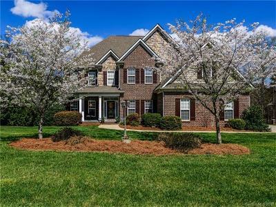 Davidson Single Family Home For Sale: 121 Logan Crossing Drive
