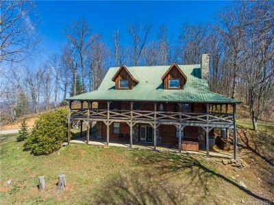 Waynesville Single Family Home For Sale: 550 Heggie Lane