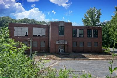 Tryon Commercial For Sale: 93 Horseshoe Curve Road