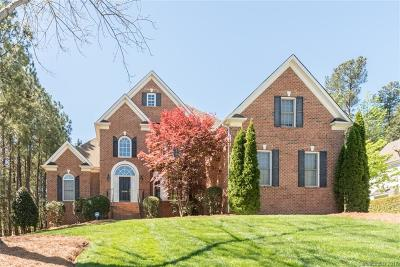 Lake Wylie Single Family Home Under Contract-Show: 2690 Landing Pointe Drive