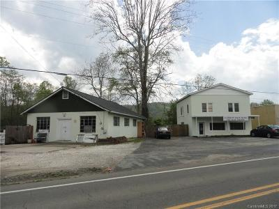 Buncombe County Commercial For Sale: 1464 Cane Creek Road