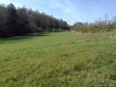Buncombe County, Haywood County, Henderson County, Madison County Residential Lots & Land For Sale: 237 Mag Sluder Road