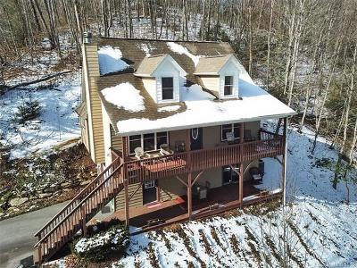 Waynesville Single Family Home For Sale: 160 Turkey Hollow Court