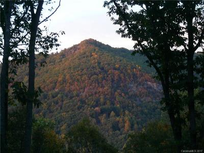 Buncombe County Residential Lots & Land For Sale: 57 Chesten Mountain Drive #3c