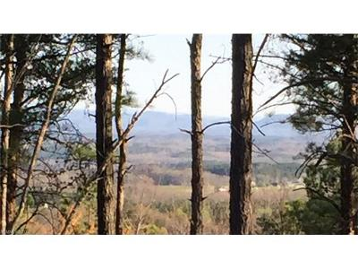 Tryon Residential Lots & Land For Sale: Lot 10 Prospect Point Drive #10