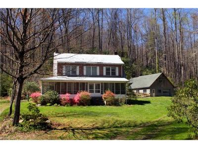 Transylvania County Single Family Home For Sale: 439 Wolf Pen Cove Road