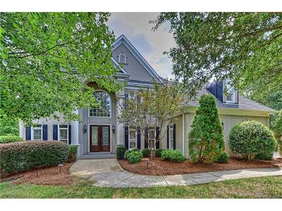 Ballantyne, Ballantyne Country Club, Ballantyne Meadows Single Family Home For Sale: 11309 Catherines Mine Circle