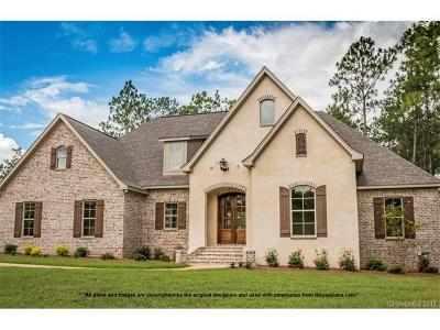 Mint Hill Single Family Home For Sale: 9122 Truelight Church Road #2