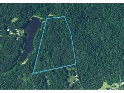 Anson County Residential Lots & Land For Sale: 20AC Gatewood Station Road